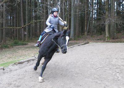 Bayerische-Jungwoelfe-Trompe zu Pferd-6