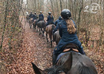 2020-02-25-Bayerische-Jungwoelfe-Initiative-Trompe-Burgund.jpg