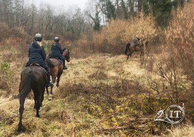 2020-02-27-Bayerische-Jungwoelfe-Initiative-Trompe-Burgund.jpg