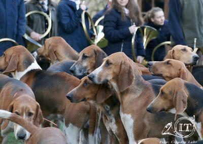 2020-02-61-Bayerische-Jungwoelfe-Initiative-Trompe-Burgund.jpg